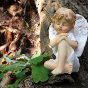 angel-3244681_1920